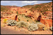 Die Burr Trail Road